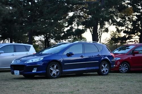 2005 Peugeot 407SW