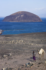 Camel driver and Evil Island, Ghoubbet al-Kharab, Djibouti, Red Sea