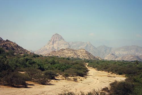 yemen abyan