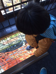 東京タワーにいっていたよ!