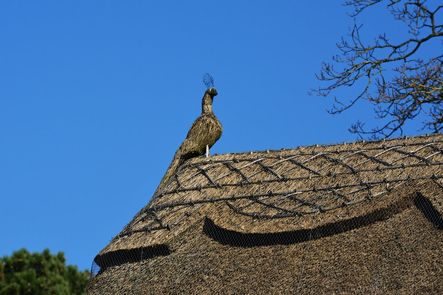 20140309-19_Dunchurch Thatched Roof + Bird Sculpture
