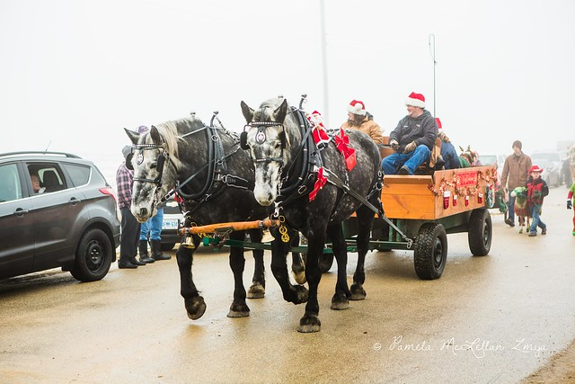 20141213-HolsteinChristmasParade-WM-16