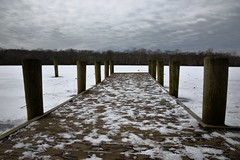 Blydenburgh Park - 2015