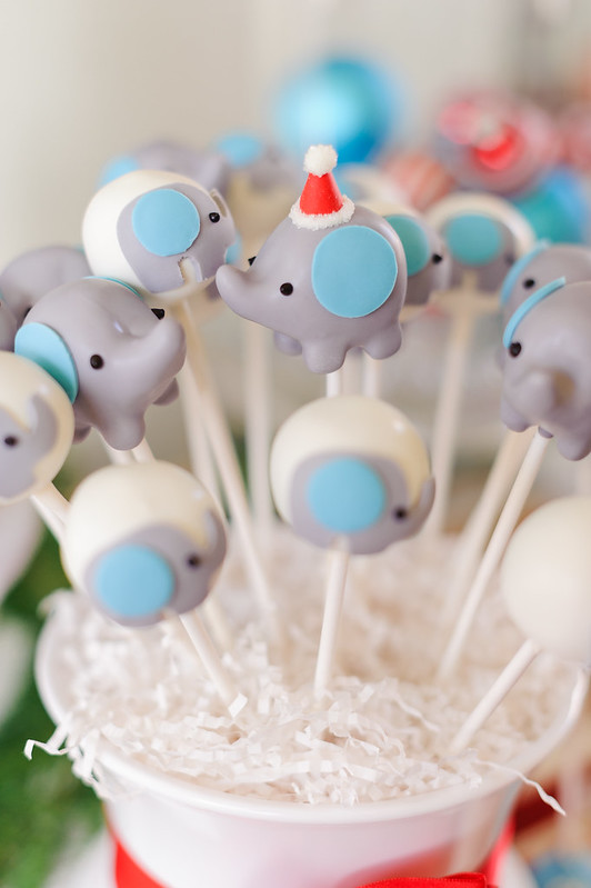 Sweet Winter Elephant Baby Shower