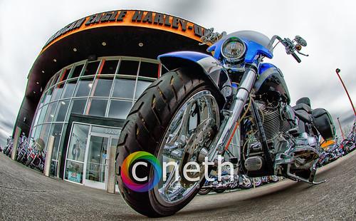 American Eagle Harley Davidson