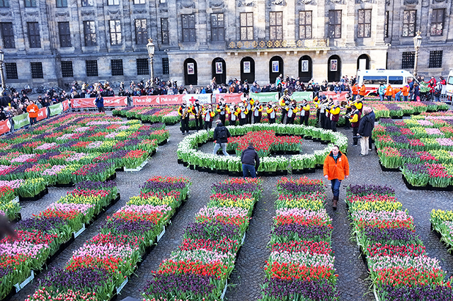 ACC_TulipDay_Palace
