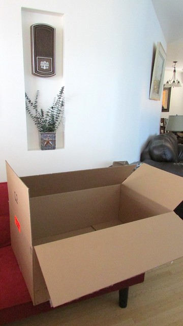 Unboxing of CanadianStudio Photography Studio Kit