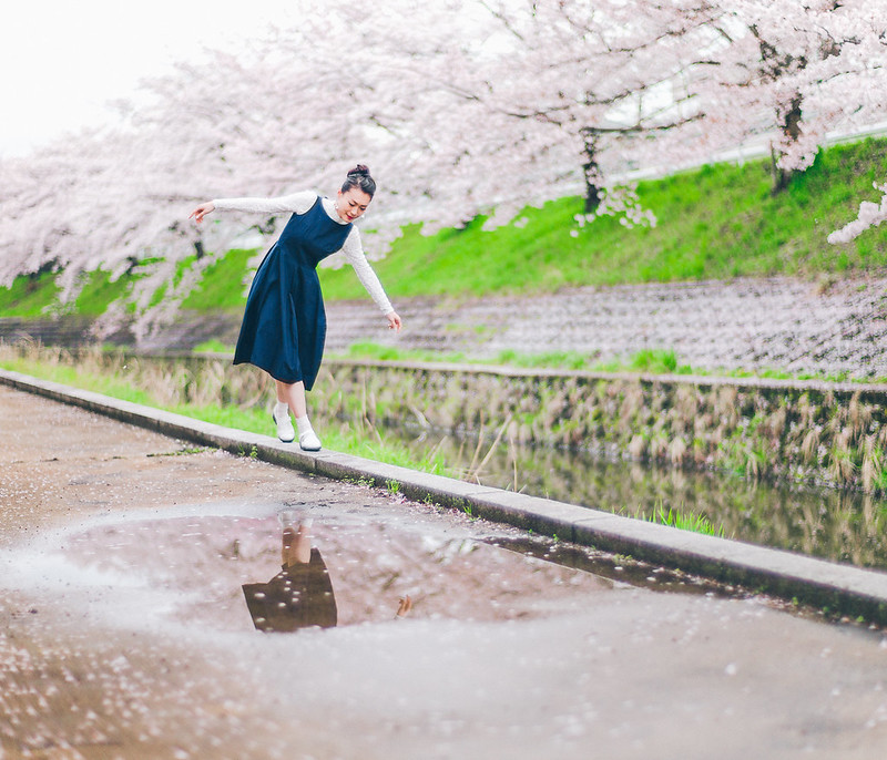 7.Roaming Under The Cherry Blossoms.