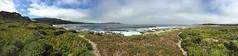 Morning hike in Carmel Meadows/Carmel River Lagoon