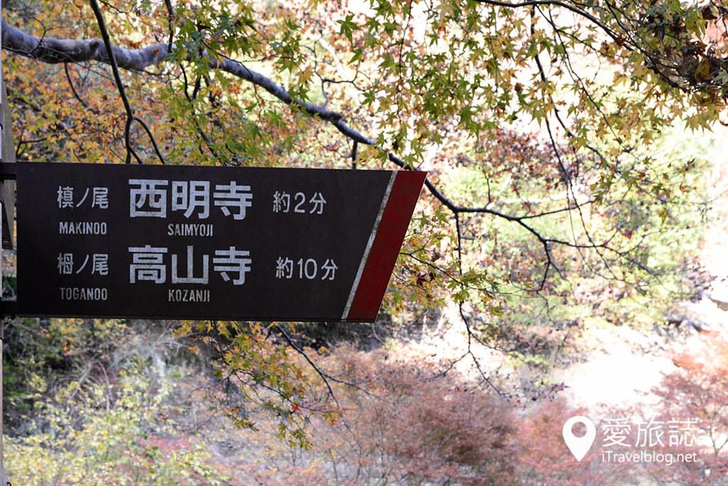 京都赏枫景点 高雄西明寺 34