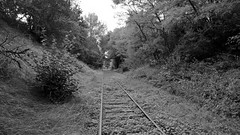 Bologne Haute-Marne 29 August 2016 025bw - Photo of Cirey-lès-Mareilles