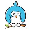 circle_bird