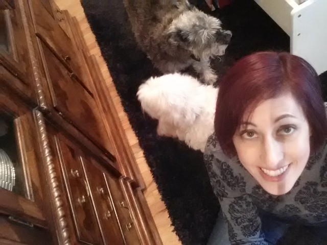 The dogs do not trust the selfie stick.