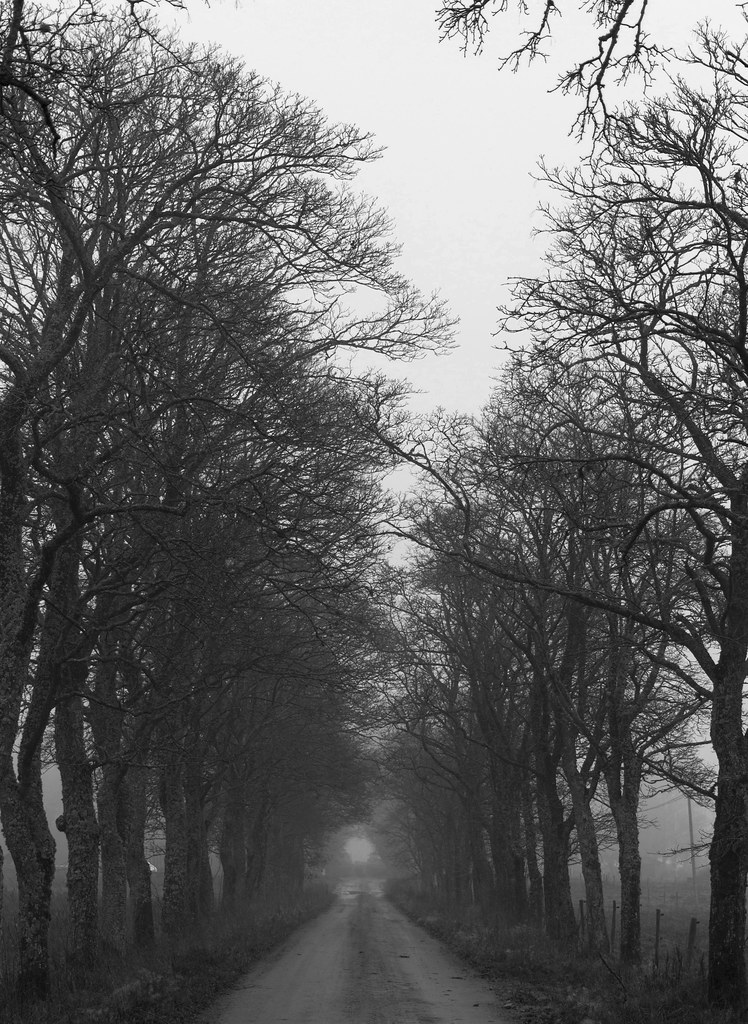 Ghostly Path