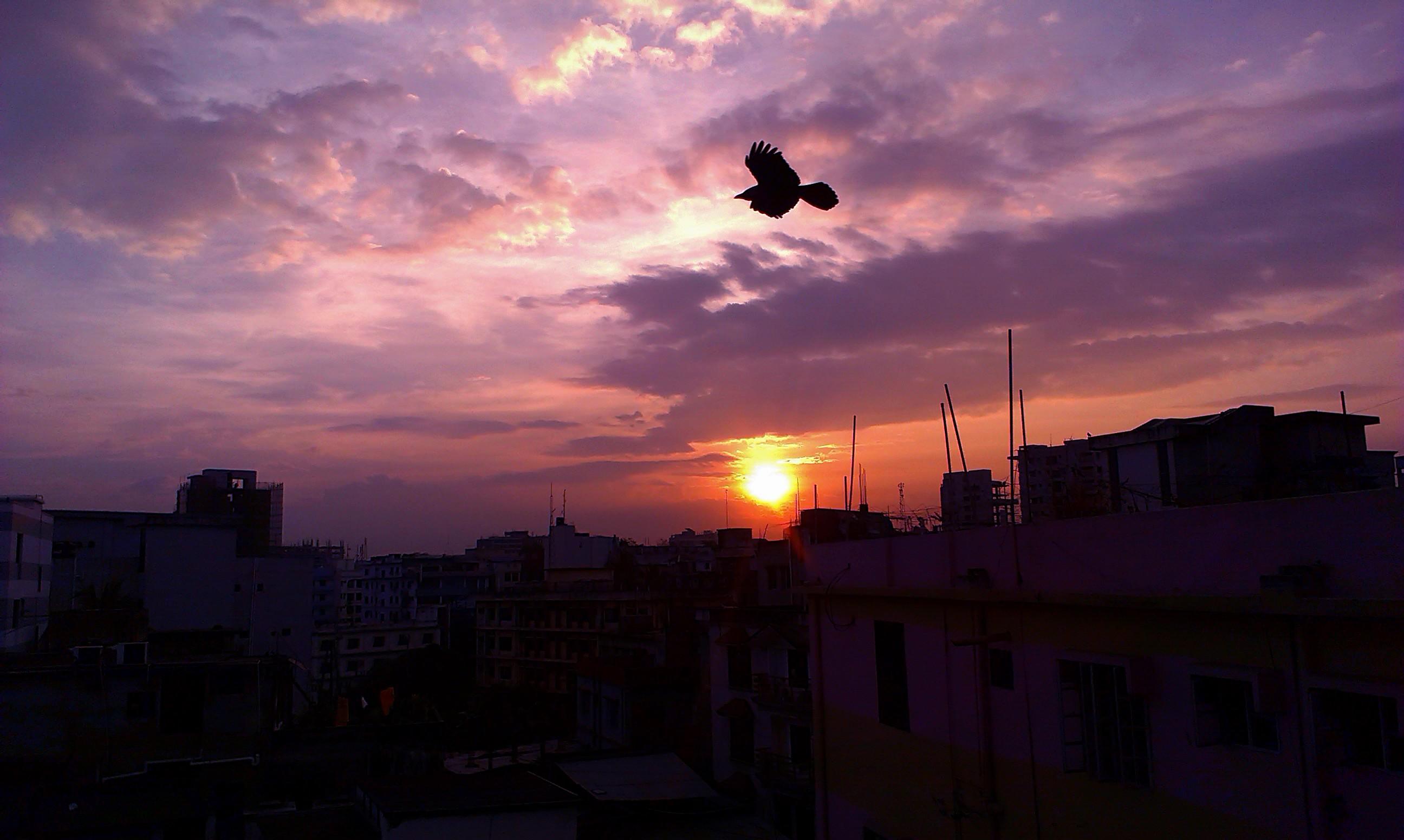 Natural Images Sunrise