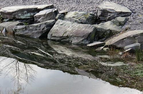 772 Slate boulder reflecrions