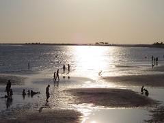 vacation-2008-1-301