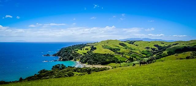 141130.297 Man O' War Vineyards, Waiheke, NZ