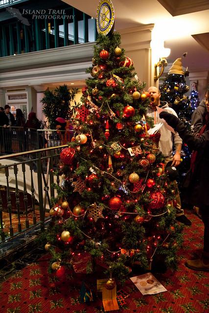 Festival of Trees - 2014.12.19-9532