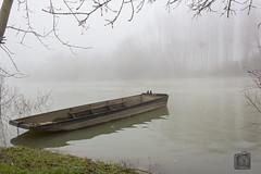 Brouillard sur la Seine (3)