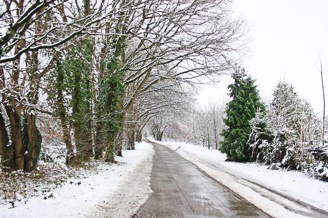 Winter-Wonder-Land Dez 2014_01