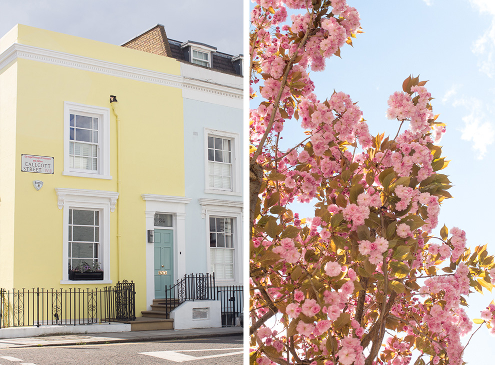 4 Cherry Blossom Notting Hill