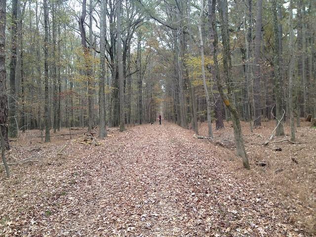 Battlefield Hike 11.23.14