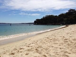 Зображення Shark Beach.