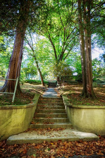 Path into the Sleepy Hollow Cemetery.