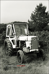 David Brown Tractor (Abandoned)