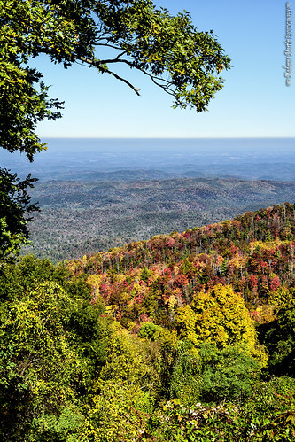 trees mountains tennessee scenic