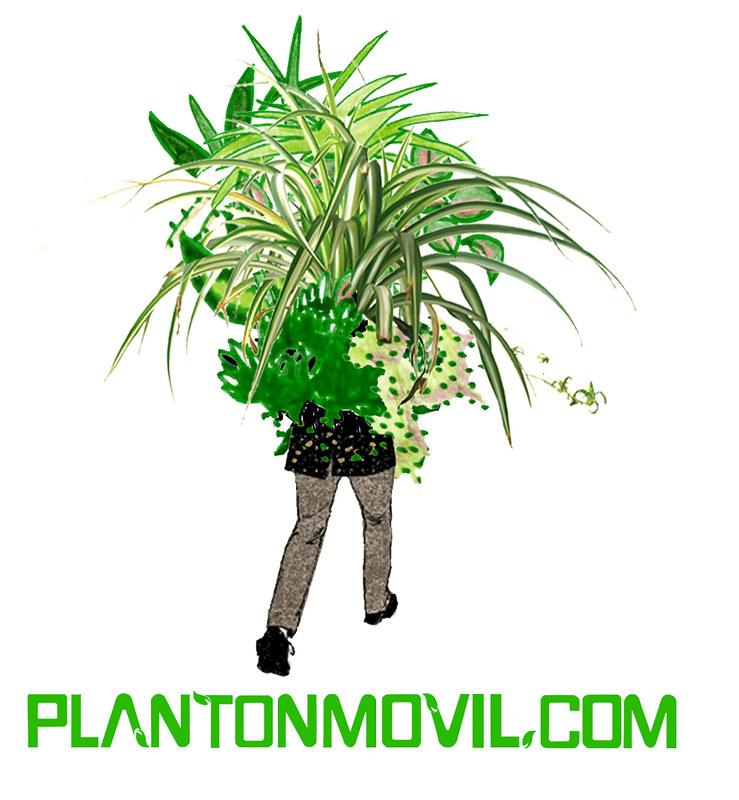 Planton Movil 1