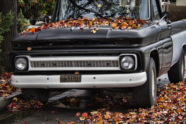 Truck in fall leaves