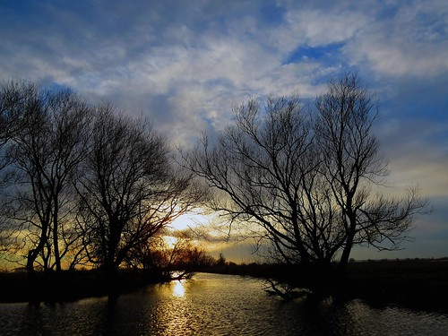 sunset nature water netherlands landscape