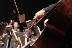 Concert du nouvel an 2015