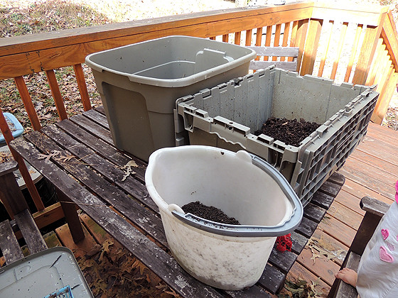 worm-composting-07