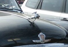 Leaping deer hood ornament