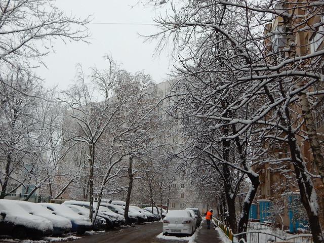 двор в снегу