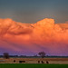 December storm clouds by Marvin Bredel