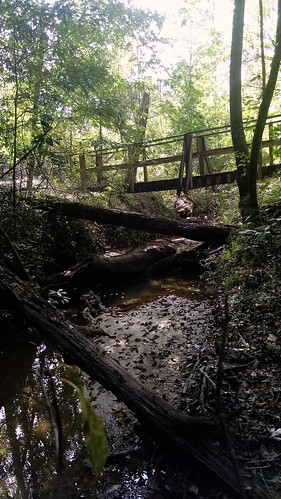 bridge forest hiking ms desoto 2014 backpakcing blackcreektrail