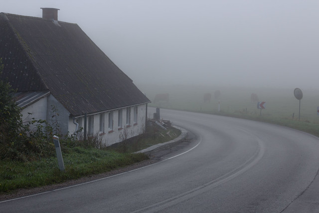 Lost in the Fog - Denmark