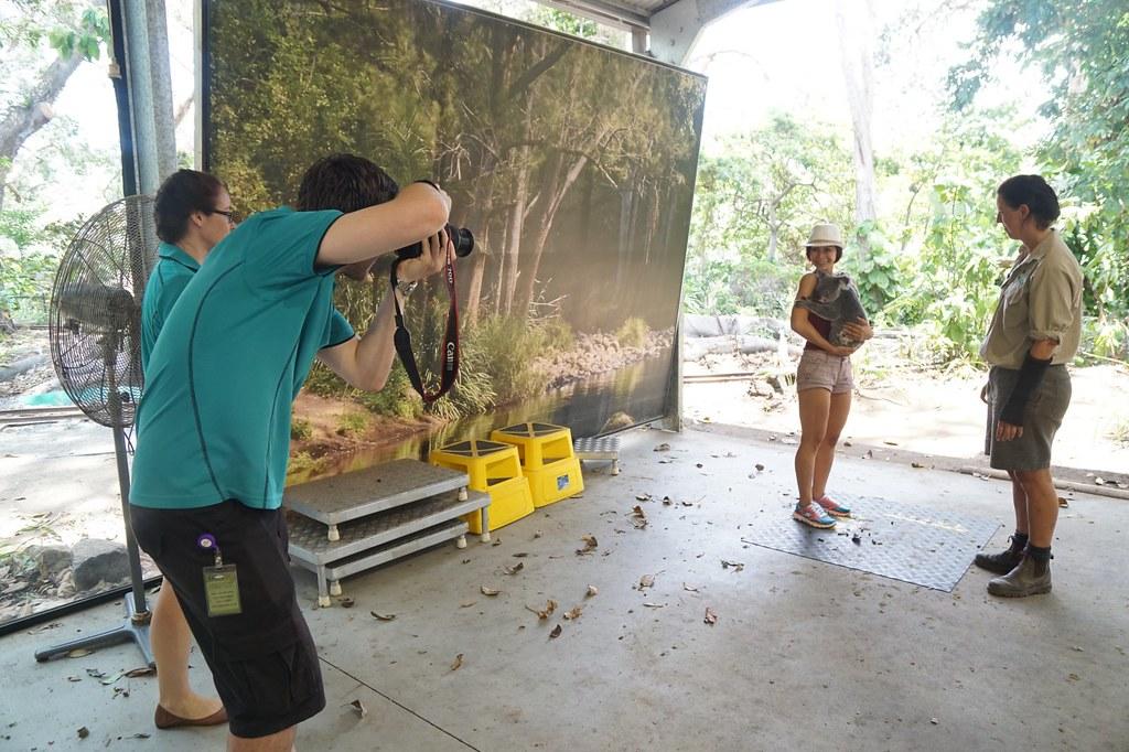 Currumbin Wildlife Sanctuary - rebecca saw - koala