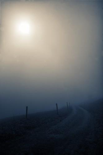 road cloud sun mist fog schweiz switzerland nebel suisse path pat ostschweiz svizzera rheintal rhinevalley sargans