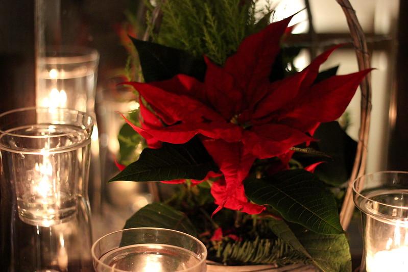 joulunaikaa 2014 072
