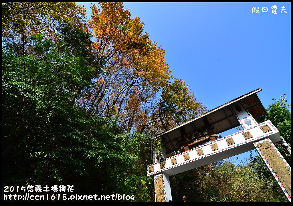 2015信義土場梅花DSC_9460