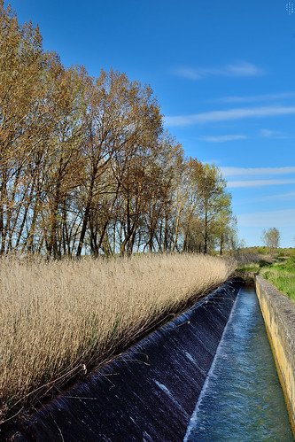 Spillway, Vanishing Point, Campos branch, The Canal of Castile, Valladolid, Spain