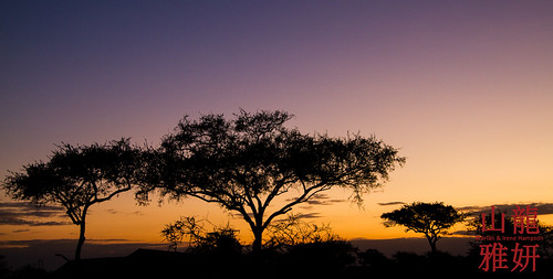 sunrise landscape tanzania safari serengetinationalpark seroneraregion tzday03 africanwildcatsexpeditions
