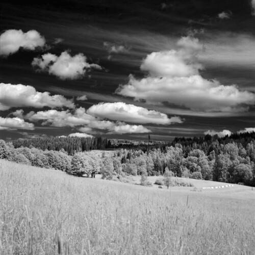 blackandwhite bw 6x6 film clouds rollei analog mediumformat square ir 120film infrared mf rodinal xenar filmphotography rolleicordiv filmisnotdead ir400 iamfilm rolleiinfrarot believeinfilm