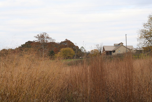 James River State Park Fall 2014 (176)