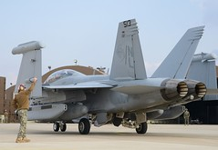 An EA-18G Growler from VAQ-138 taxis the runway of Kunsan Air Base, Nov. 17. (U.S. Navy/MC1 Frank L. Andrews)